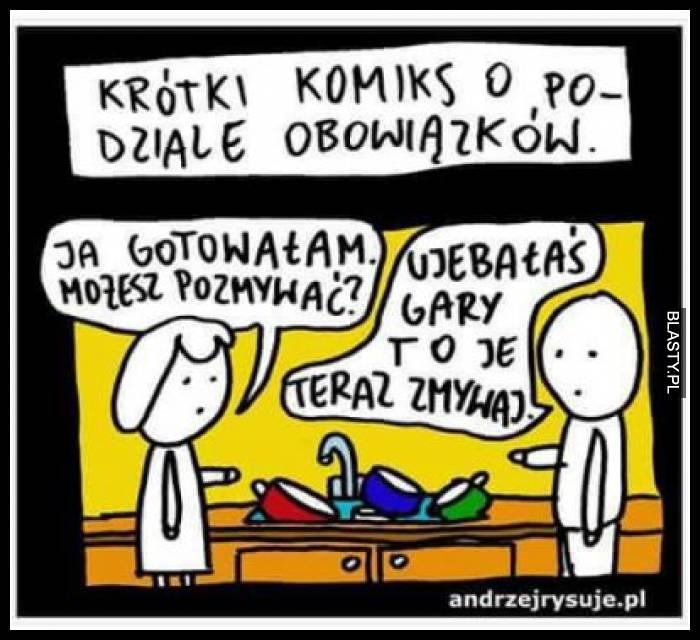 krotki-komiks-o-podziale-obowiazkow_2016