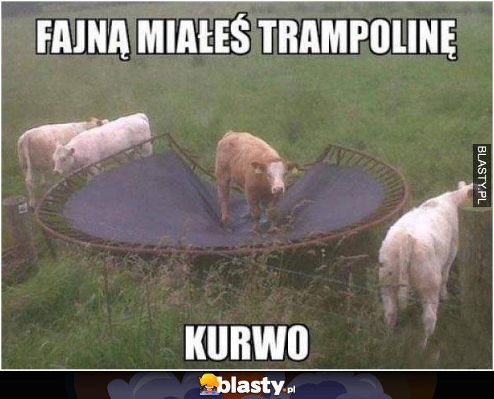 Fajną miałeś trampoline