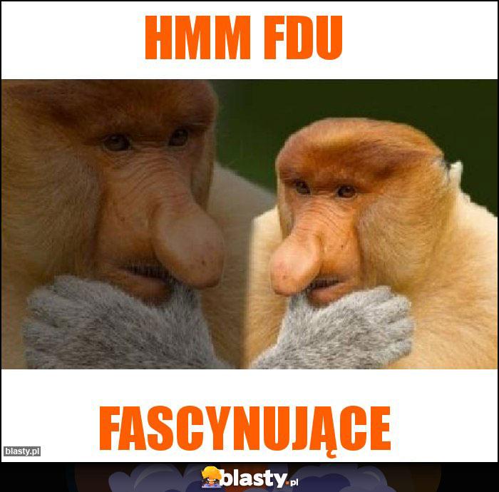 hmm FDU