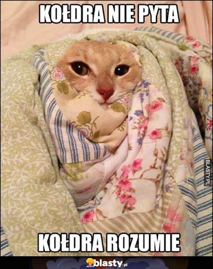 Kołdra nie pyta, kołdra rozumie kot