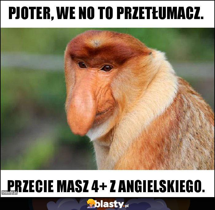 Pjoter, we no to przetłumacz.