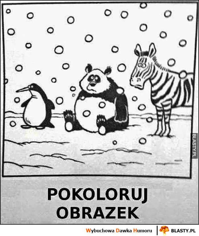 Pokoloruj obrazek pingwin, zebra, panda - same czarno białe