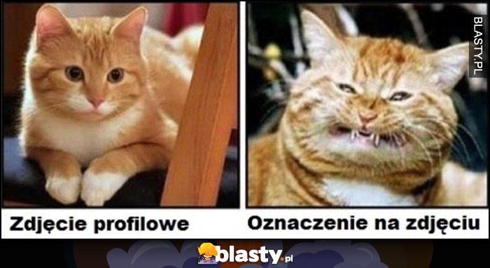 Kot zdjęcie profilowe vs oznaczenie na zdjęciu porównanie