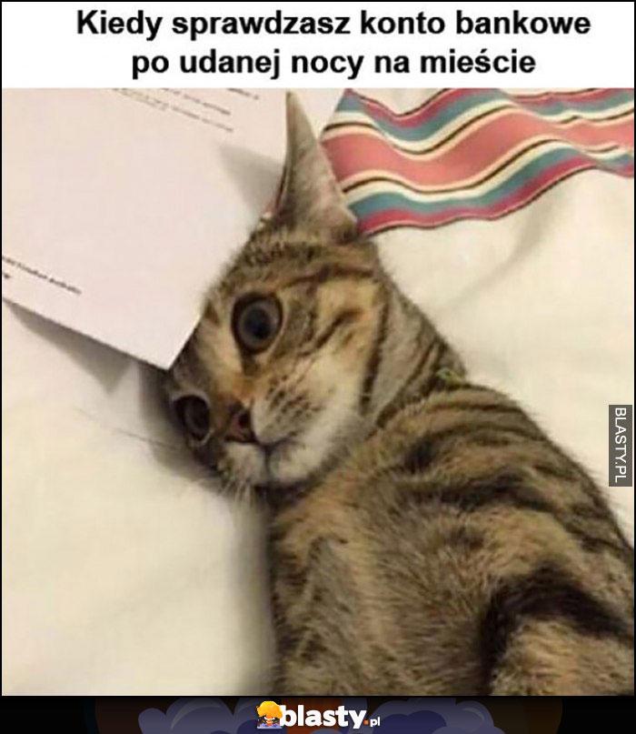 Kot kiedy sprawdzasz konto bankowe po udanej nocy na mieście