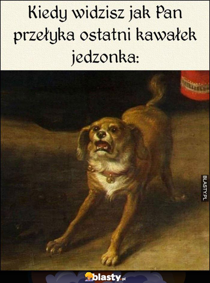 Pies kiedy widzisz jak pan przełyka ostatni kawałek jedzonka