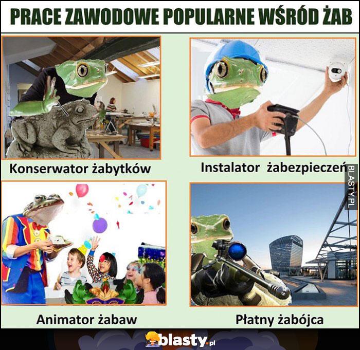 Prace zawodowe popularne wśród żab: konserwator żabytków, instalator żabezpieczeń, animator żabaw, płatny żabójca