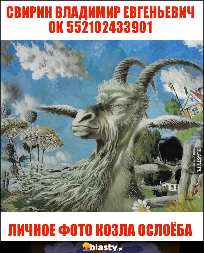 свирин владимир евгеньевич ok 552102433901