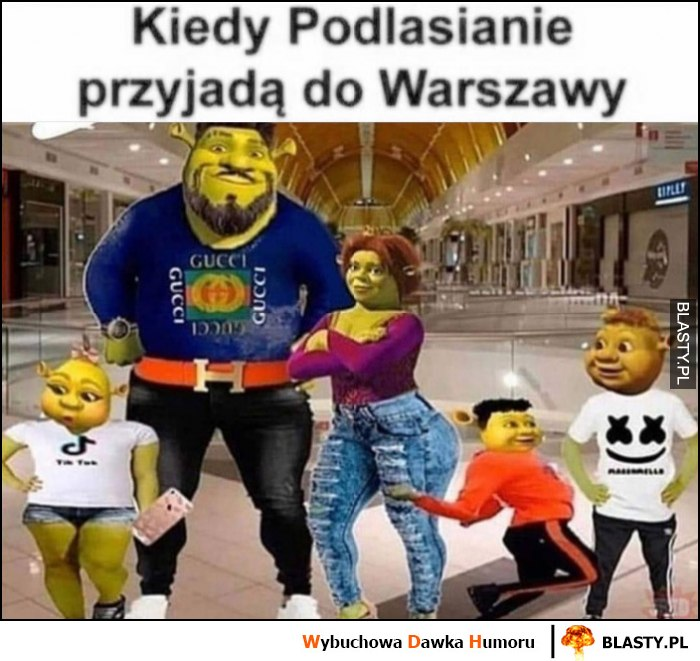 Kiedy Podlasianie przyjadą do Warszawy Shrek