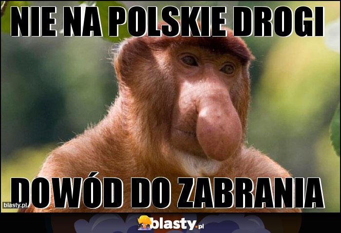 Nie na polskie drogi
