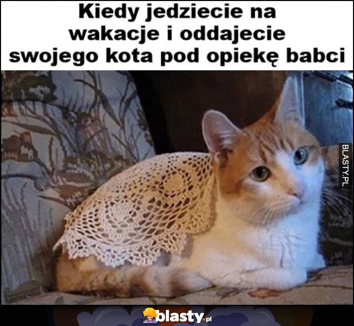 Kot kiedy jedziecie na wakacje i oddajecie swojego kota pod opiekę babci obruś narzuta