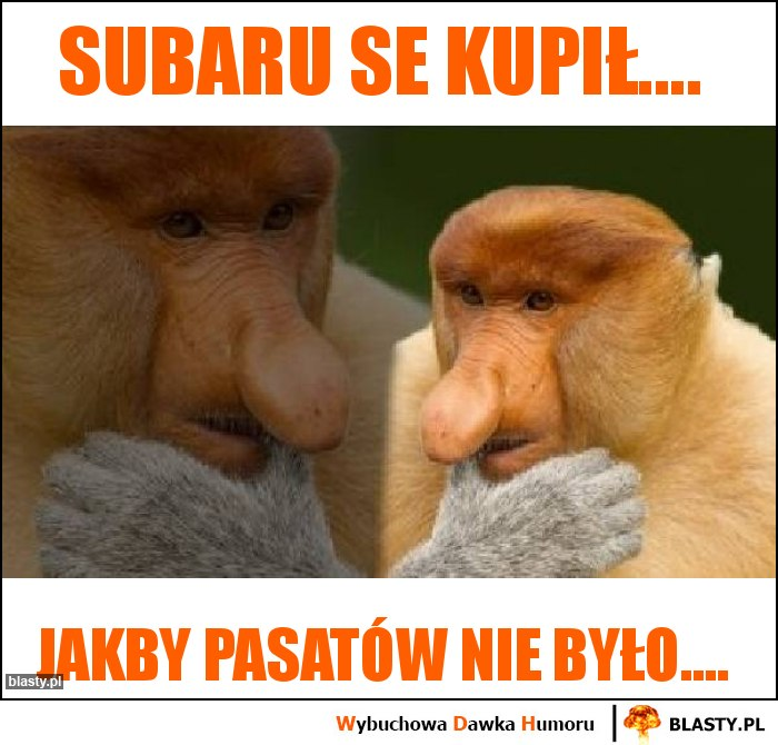 Subaru se kupił....