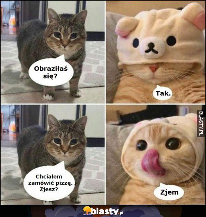 Kot koty obraziłaś się? Tak, chciałem zamówić pizzę, zjesz? Zjem
