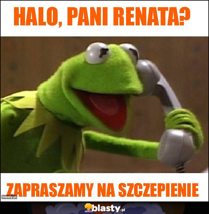 Halo, Pani Renata?