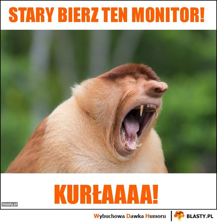 Stary bierz ten monitor!