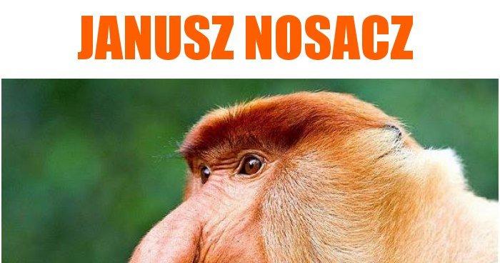 Janusz Nosacz memy, gi...