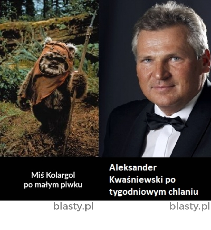 Aleksander Kwaśniewski vs Miś Kolargol