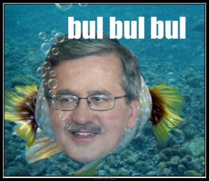 Bul bul bul