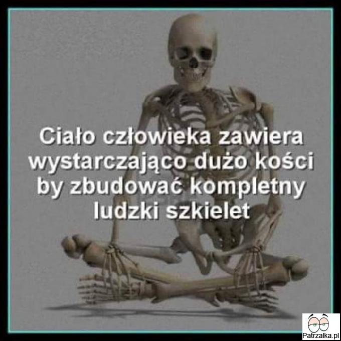 Ciało człowieka anatomia