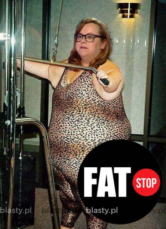 Fat stop
