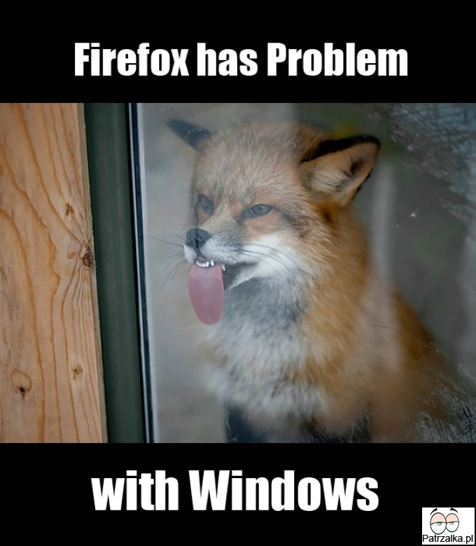 Firefox and his System