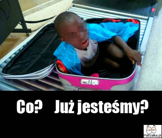 imigrant w walizce