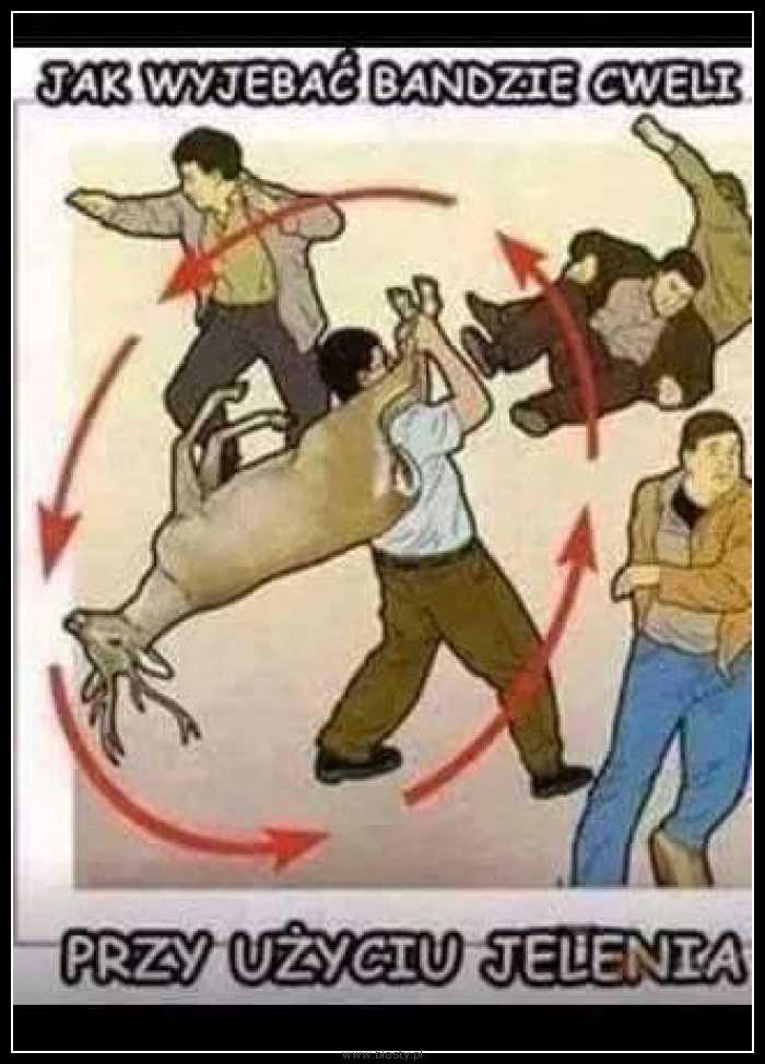 Jak wyjebać bandzie cweli przy użyciu jelenia - niektóre rzeczy musisz wiedzieć