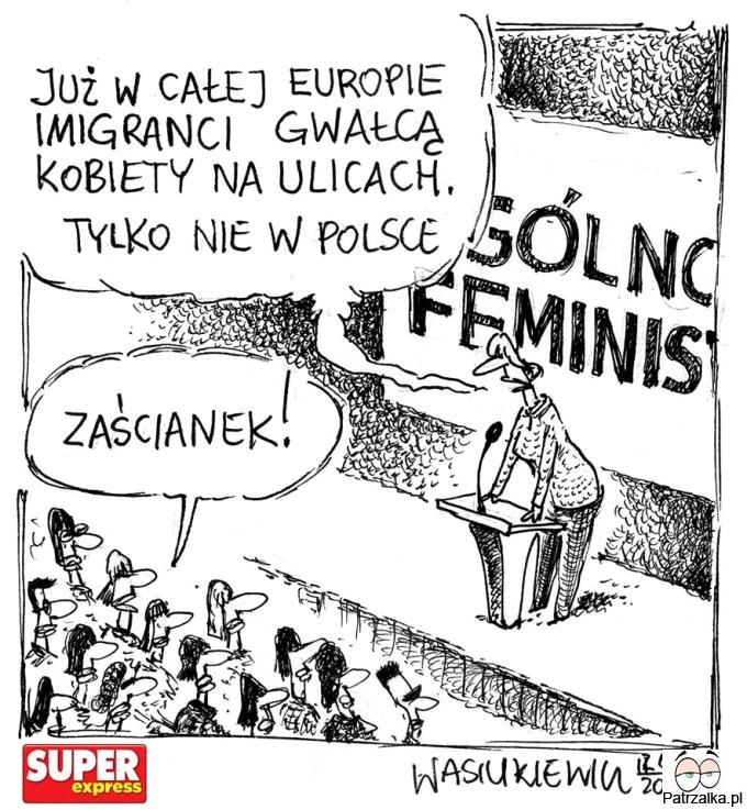 Już w całej Europie imigranci gwałcą kobiety na ulicach, tylko nie w Polsce