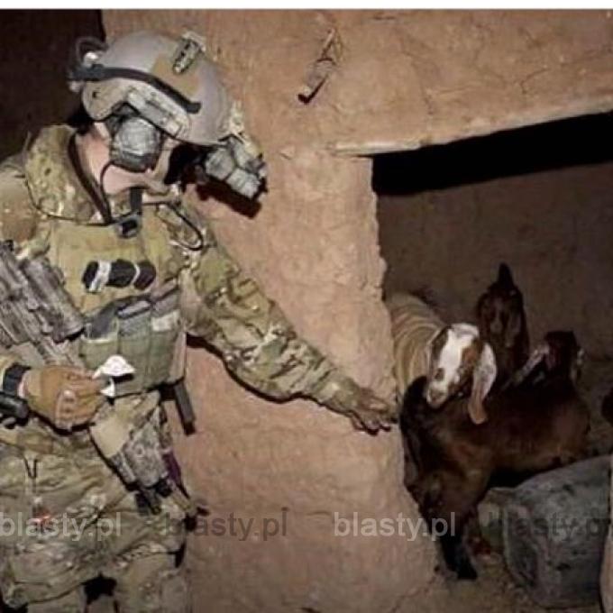Kiedy armia USA uwalnia niewolnice seksualne