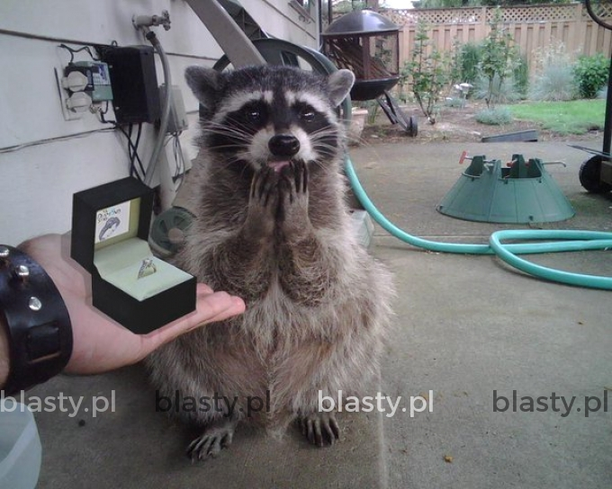 Kiedy chłopak daje CI pierscionek