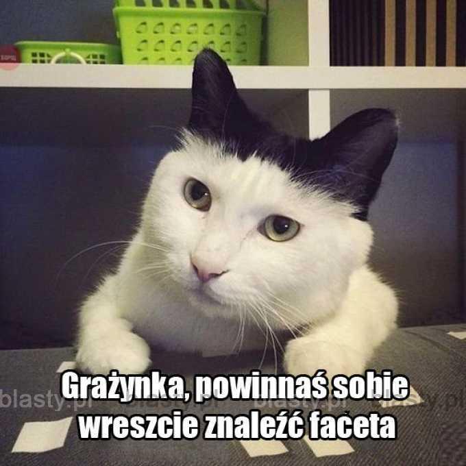Kiedy jesteś tak samotna, że nawet kot zaczyna Ci pomagać.