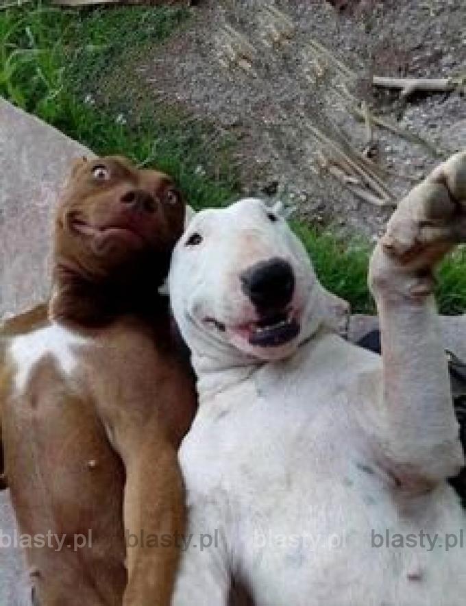 Kiedy na imprezie po pijaku robisz sobie idiotyczne selfie