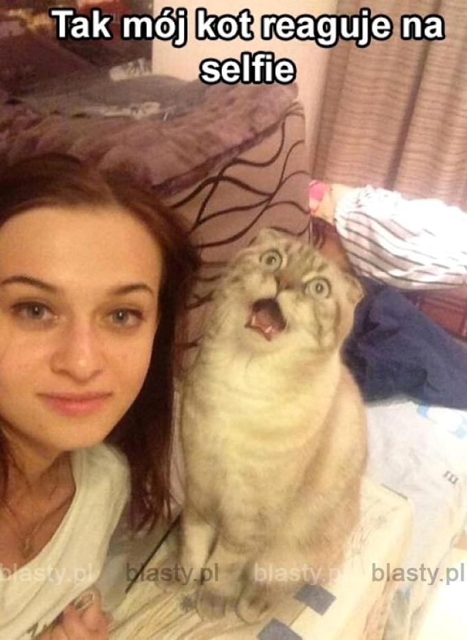 Kiedy robisz selfie z kotem