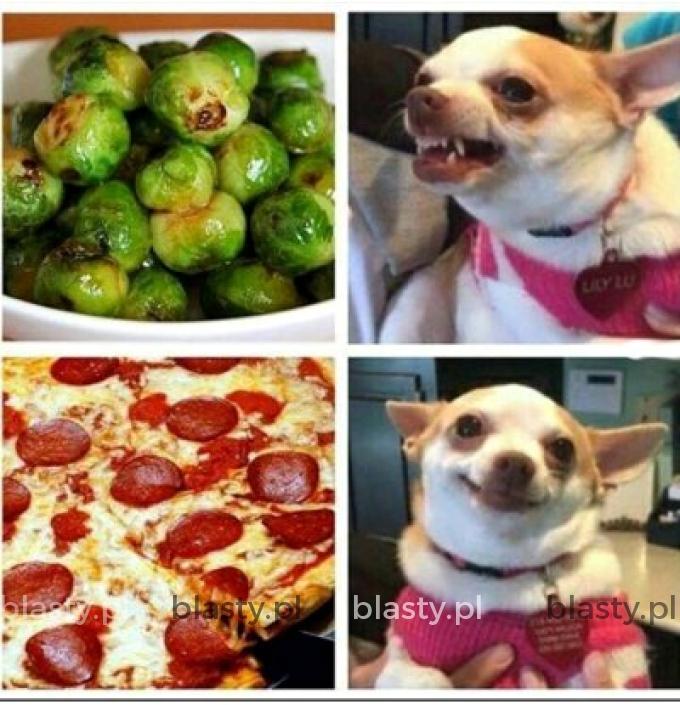 Kiedy wiesz, że wegetarianizm nie jest dla Ciebie