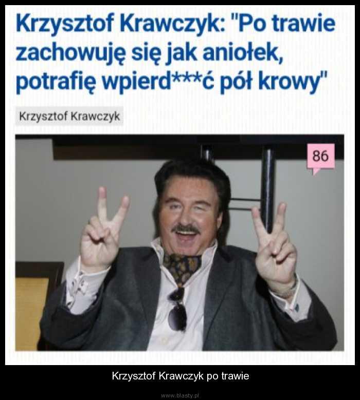 Krzysztof Krawczyk po trawie