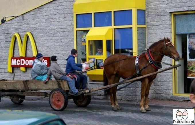 Macie siano dla konia ?