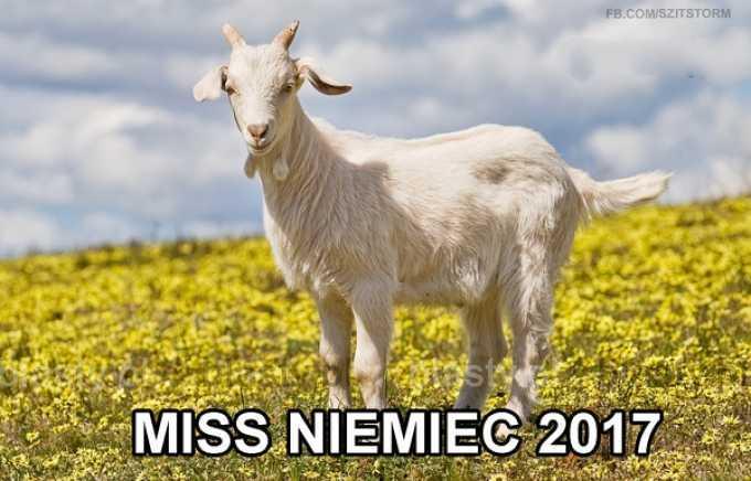 Miss Niemiec 2017