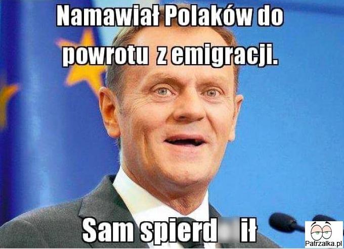 Namawiał Polaków do powrotu z emigracji