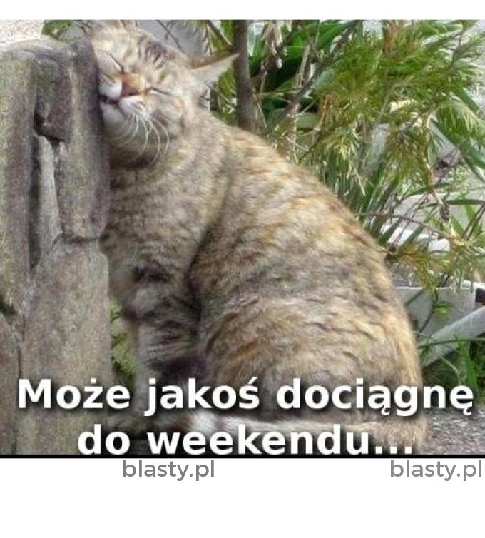 Oby do weekendu