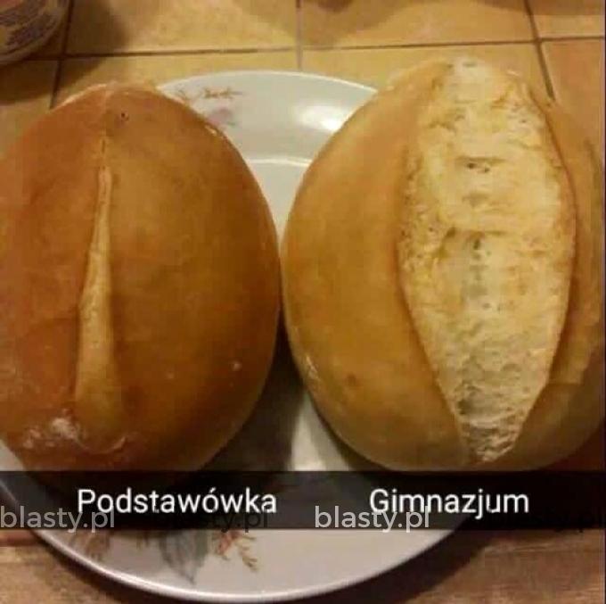 Podstawówka vs gimnazjum