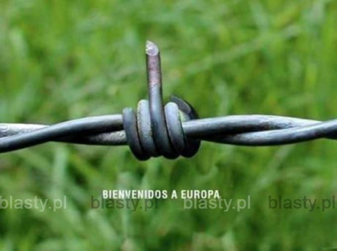 Pozdrowienia z Europy