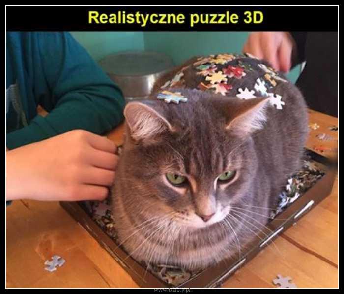 Realistyczne puzzle 3d