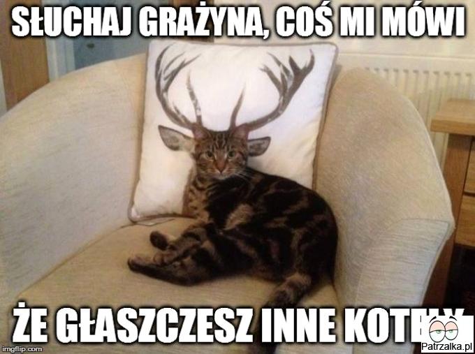 [Obrazek: sluchaj-grazyna-cos-mi-mowi-ze-glaszczesz-inne-koty.jpg]