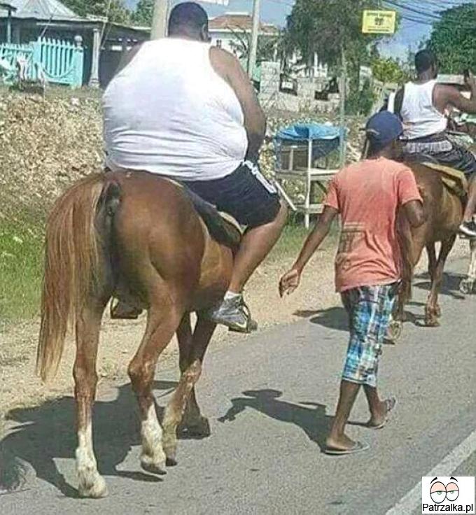 Za każdym razem jak masz ciężki dzień to pomyśl o tym koniu