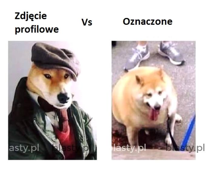 Zdjęcie profilowe vs zdjęcie oznaczone