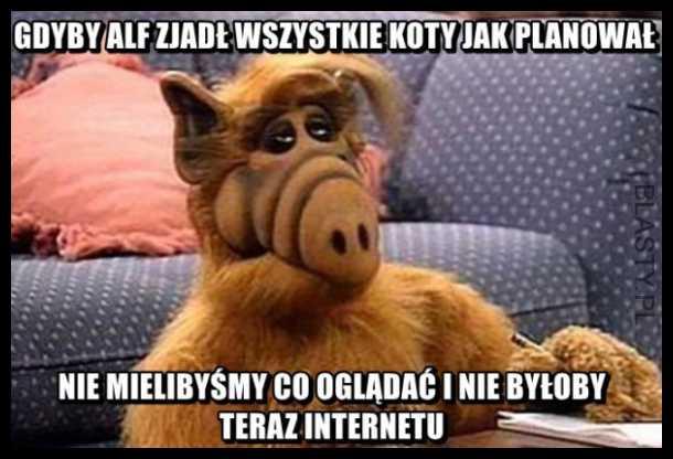 Alf i jego plany