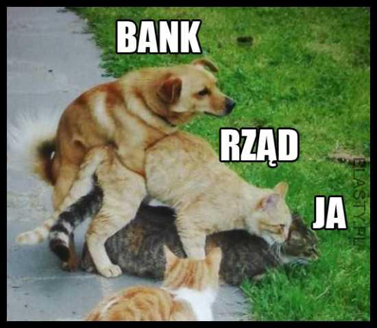 Bank, rząd i ja