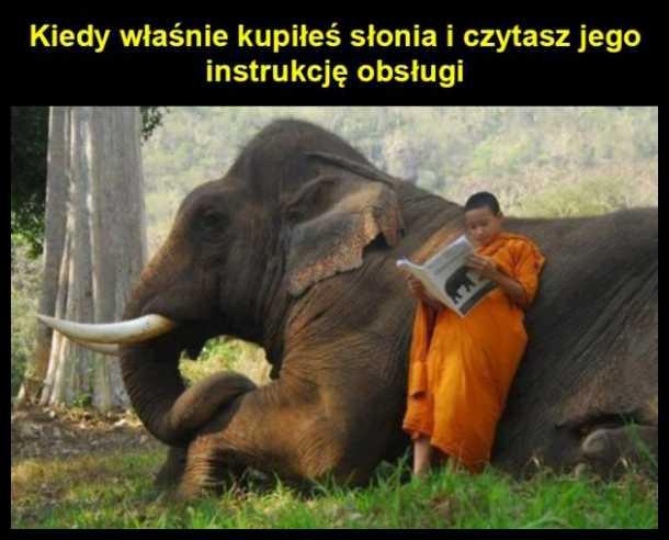 Kiedy właśnie kupiłeś słonia i czytasz jego instrukcję obsługi