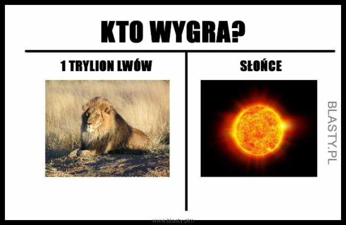 Kto wygra 1trylion lwów vs słońce