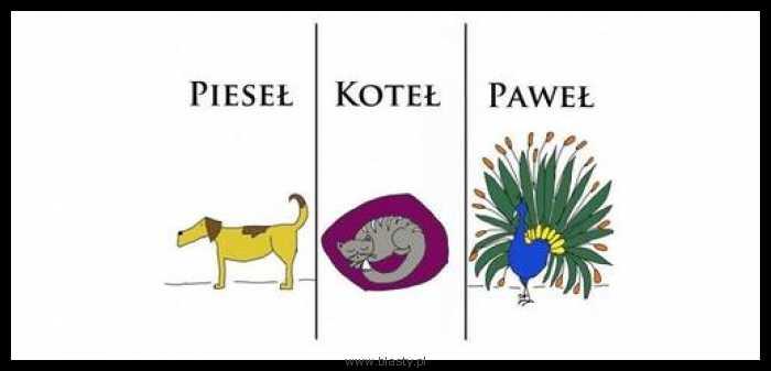 Pieseł , koteł,  Paweł