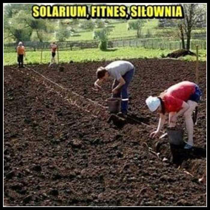 Solarium fitnes i siłownia